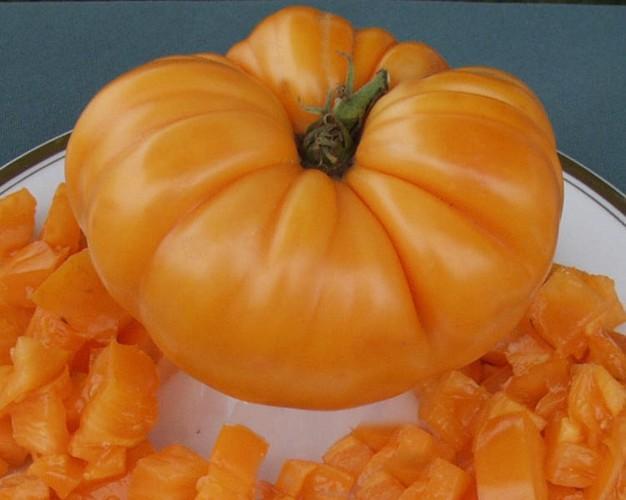 Amana Orange Tomato