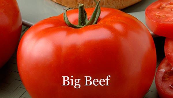 Big_Beef
