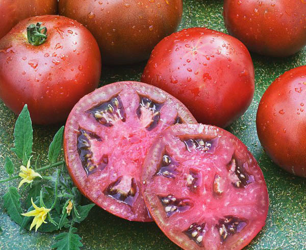 black-prince-heirloom-tomato