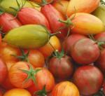 Artisan_tomato_mix