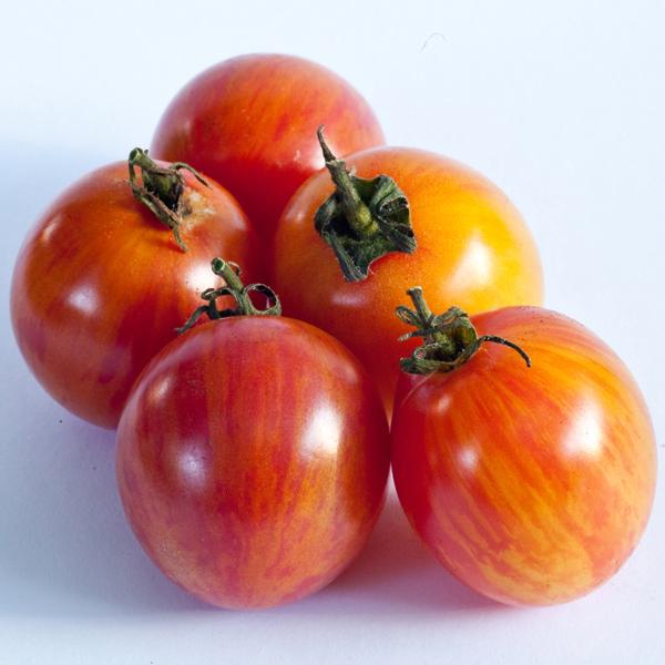 BumbleBee Sunrise tomato © Matt Emrich Photo
