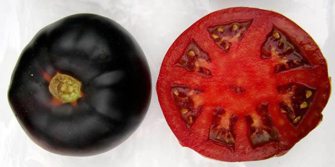 Black Beauty Tomato