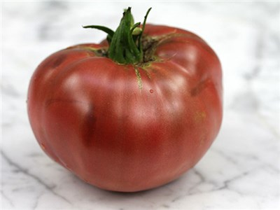Cherokee-Purple-Tomato-web